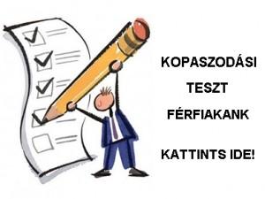 Teszt-ind-blog-FFI